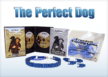 The Perfect Dog®